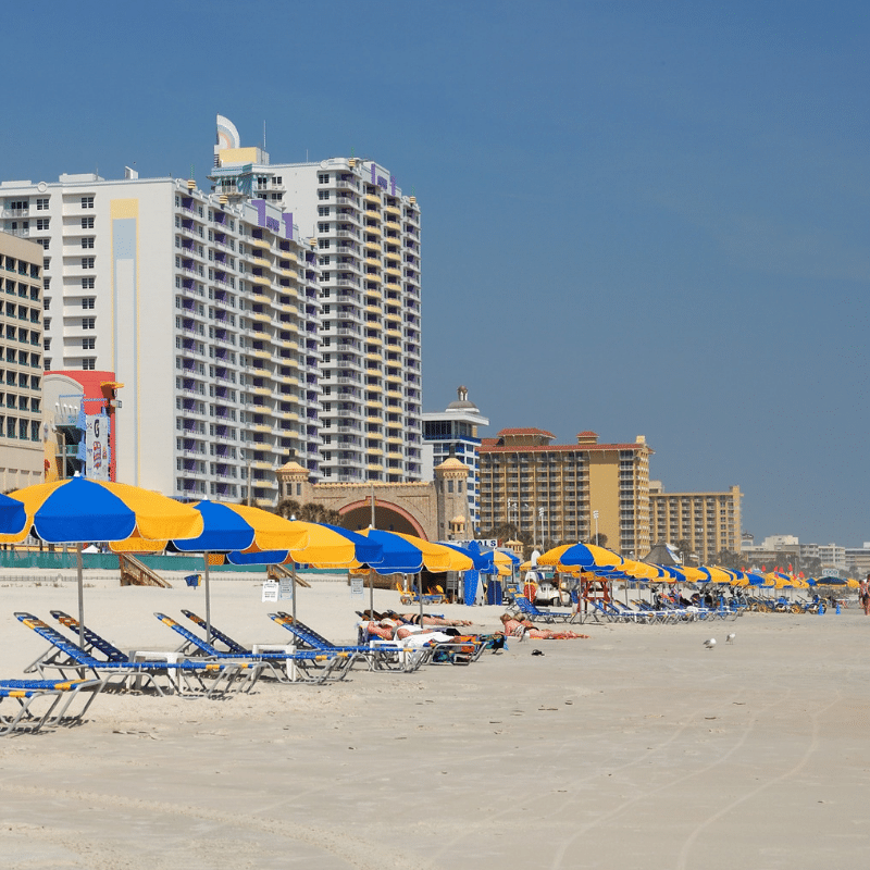 Visiting Florida doesn't have to take a bite out of your budget. Here is a list of 7 Free Things to Do in Florida whether you are in a budget or not. More at DadBlogsAbout.com
