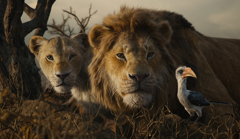 Disneys The Lion King Releases On Digital Oct 11 And On 4k